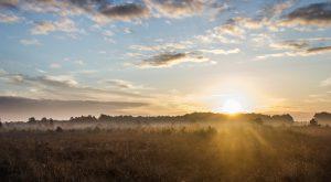 sunrise-717816_960_720